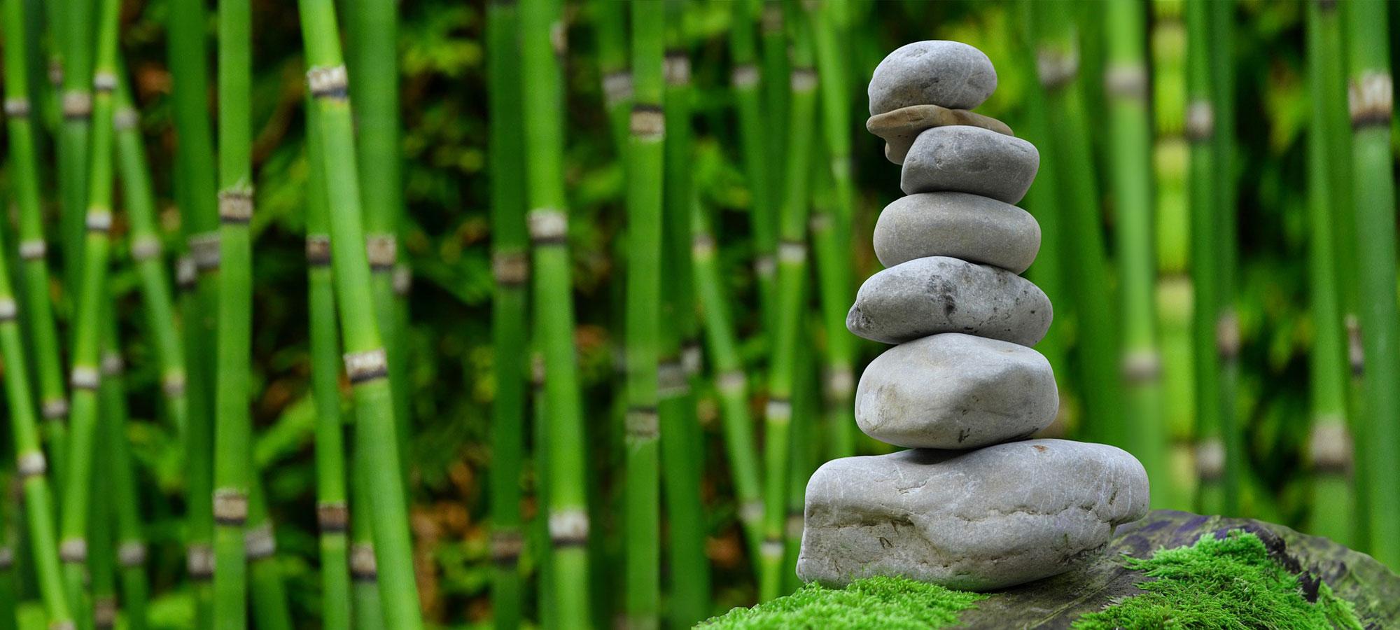 Qi Gong - Mit mehr Balance und Energie durch den Alltag